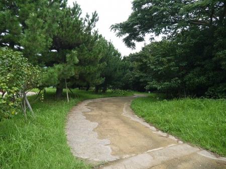 遊歩道(1)