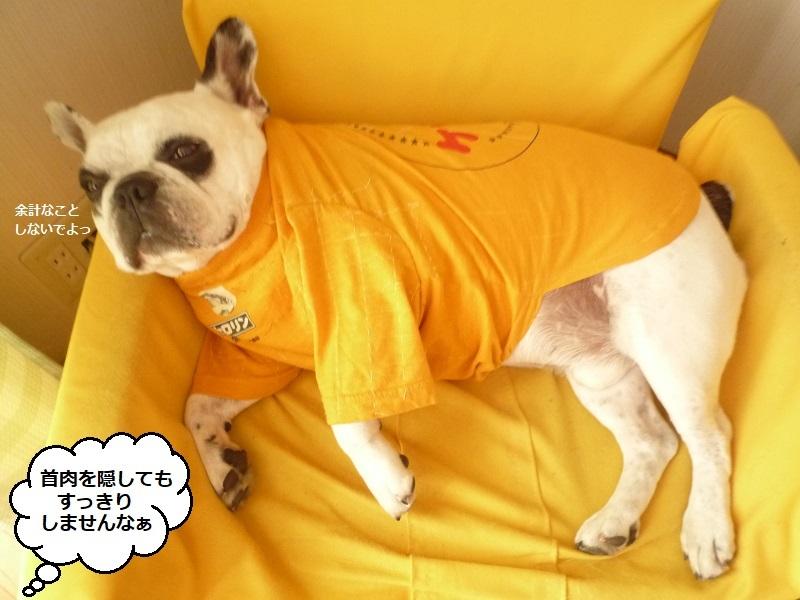 にこら201011to201108 5093
