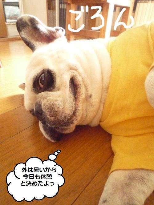 にこら201011to201108 5140