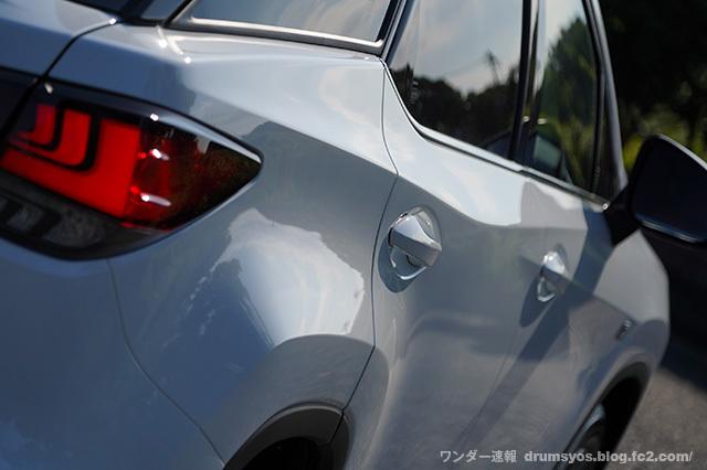 RX300Fsport06.jpg