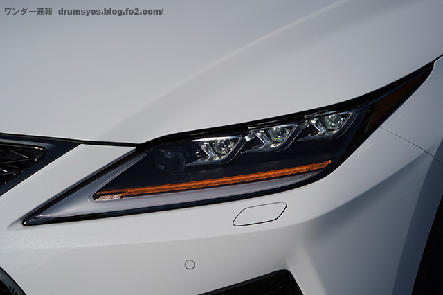 RX300Fsport11.jpg