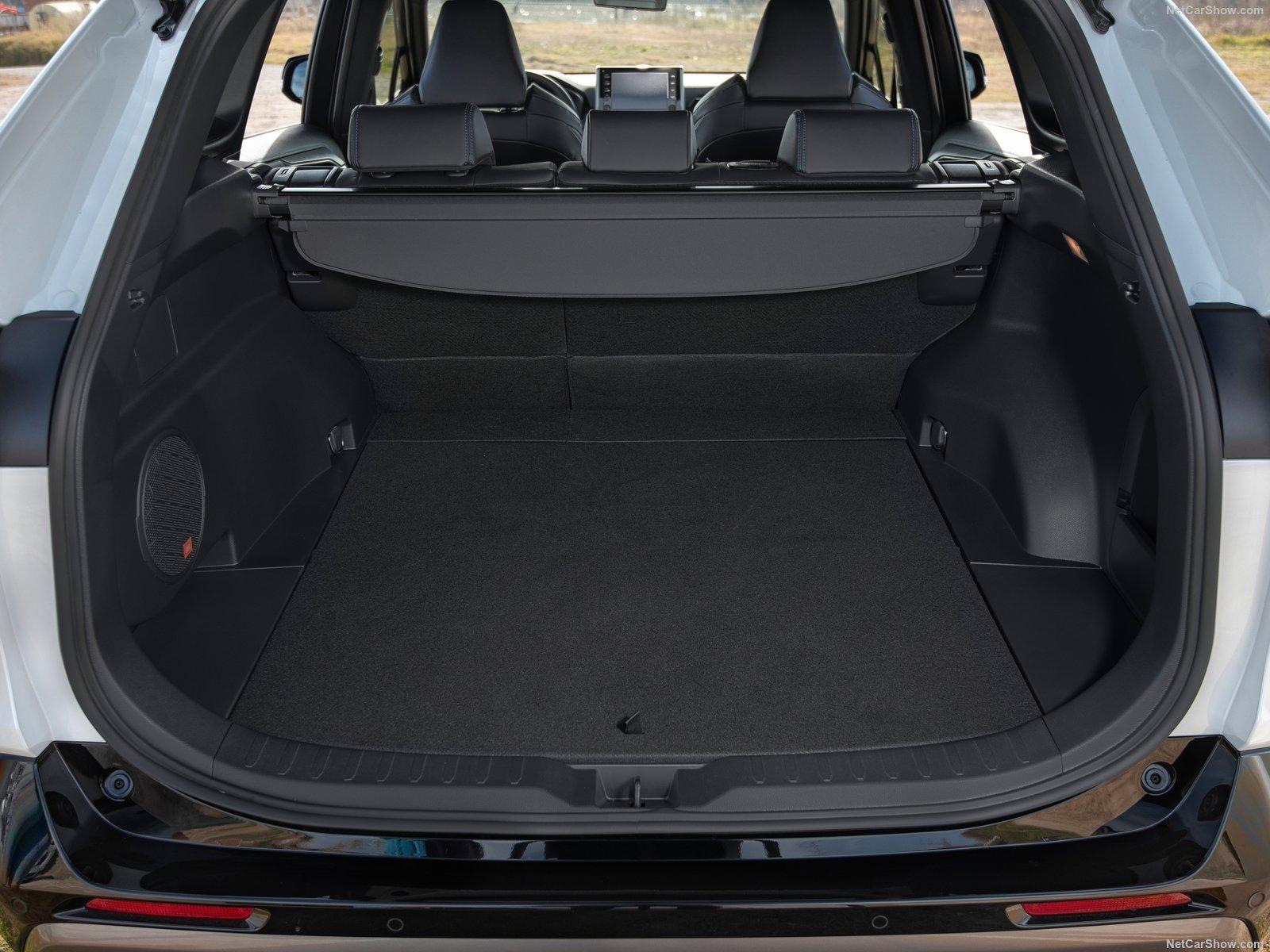 Toyota-RAV4_Hybrid_EU-Version-2019-1600-7f.jpg