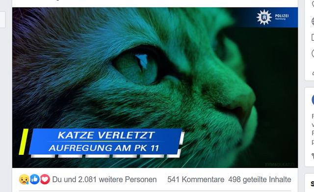 ハンブルク警察 猫