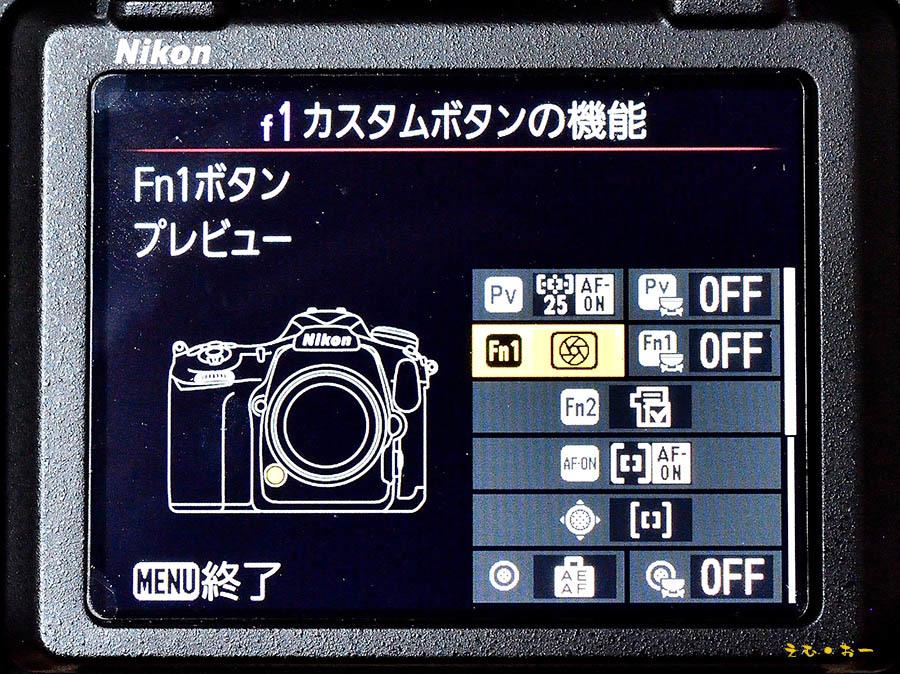 D500-2b.jpg