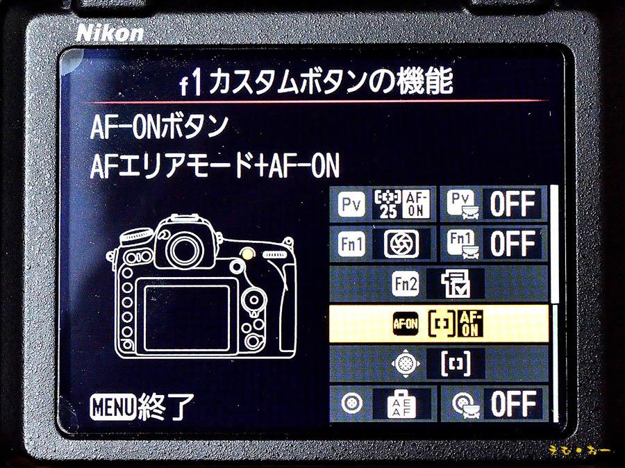 D500-3b.jpg