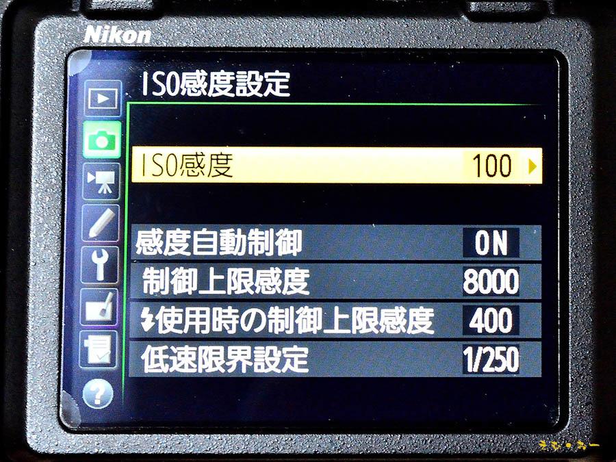 D500-4b.jpg