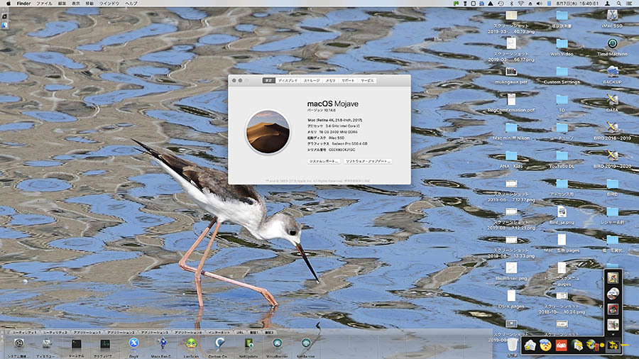 OS10-14-6b.jpg