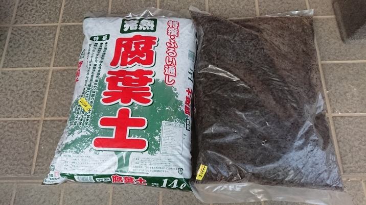 fuyoudo190801a.jpg