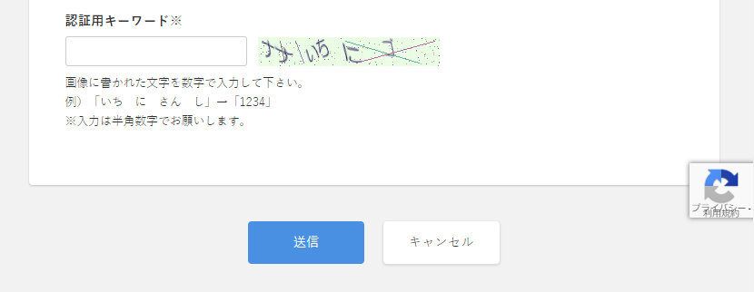 recaptcha_comment_form_superrapid.png