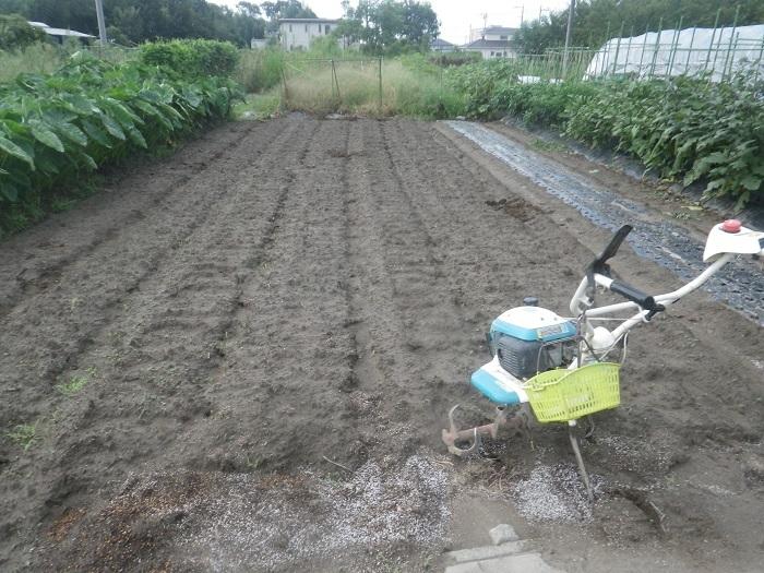 畝作り1_19_08_31