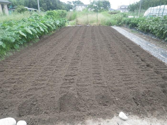 畝作り3_19_08_31