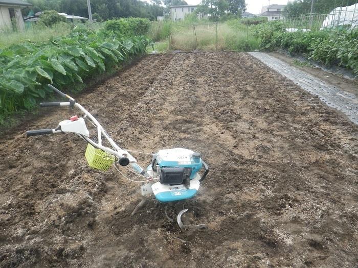 畝作り2_19_08_31