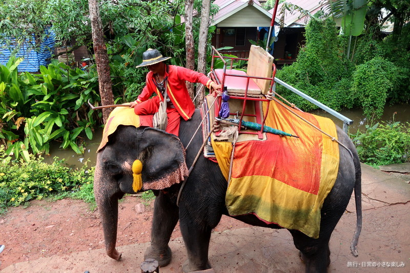 Chang Puak Camp ゾウ観光 タイ