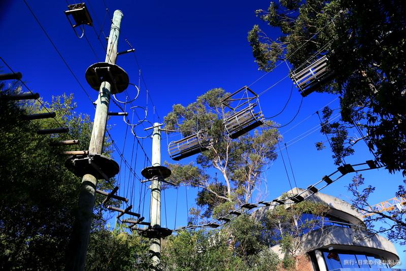 タロンガ動物園 シドニー アスレチック