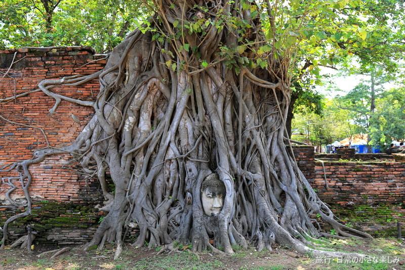 ワット・マハタート 顔が木に アユタヤ遺跡