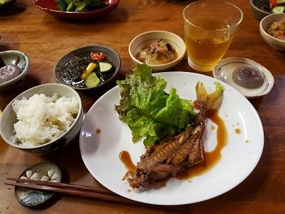三本ぎま (1)-3