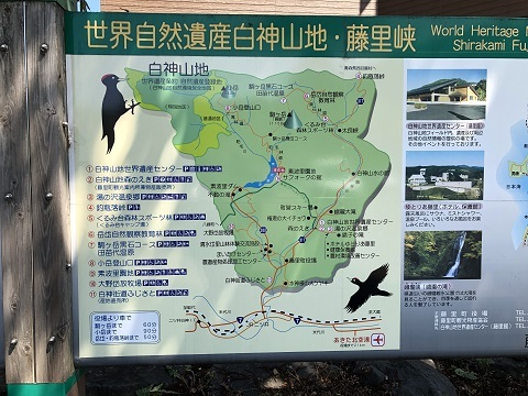 4藤里町地図