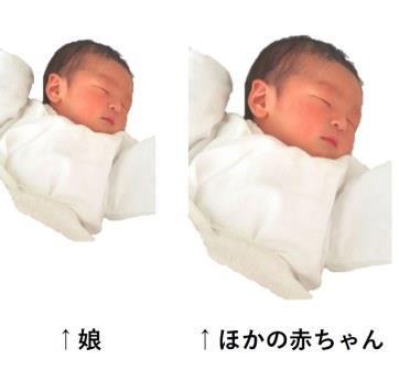 赤ちゃんのサイズを比較した写真