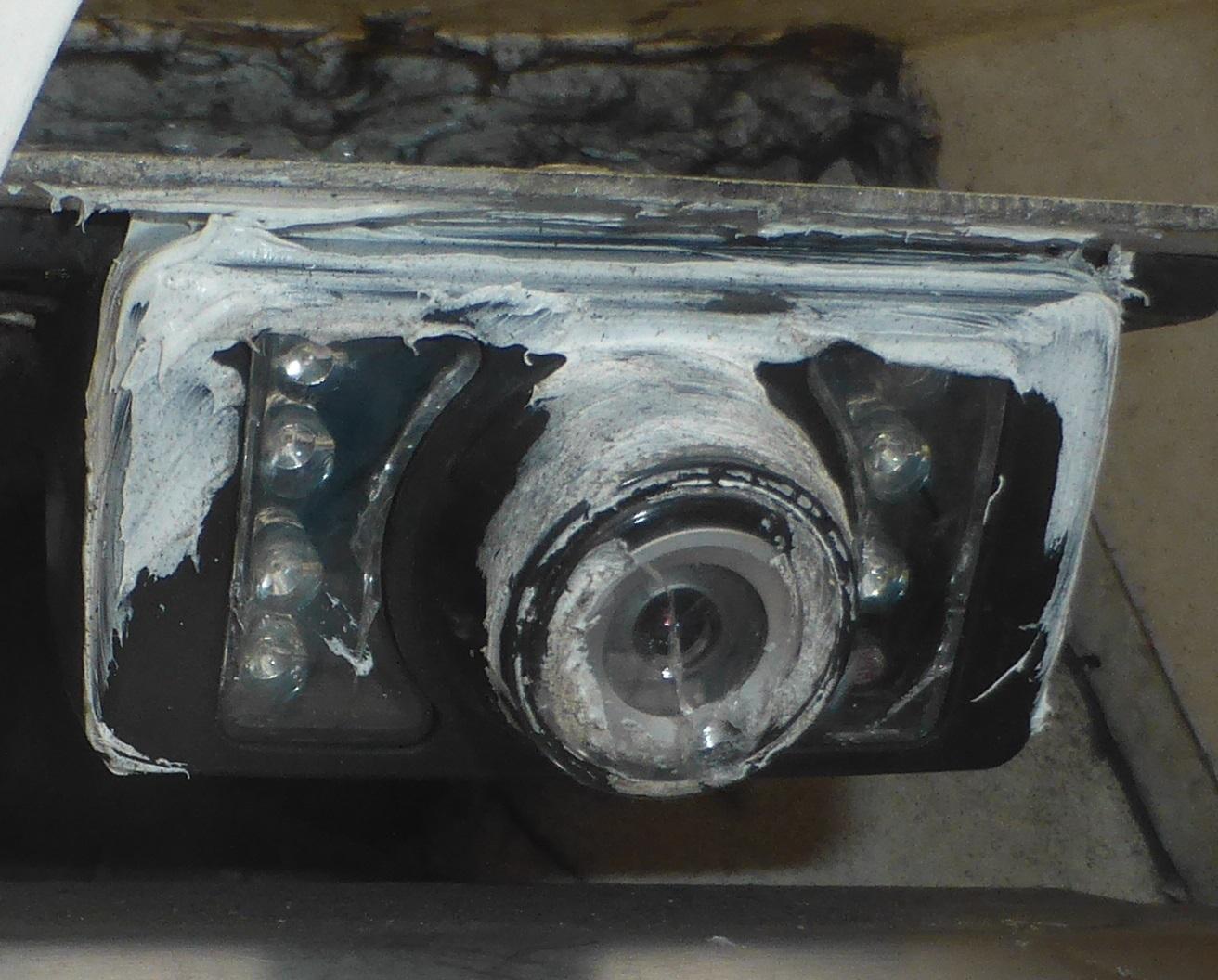 P1060308a.jpg