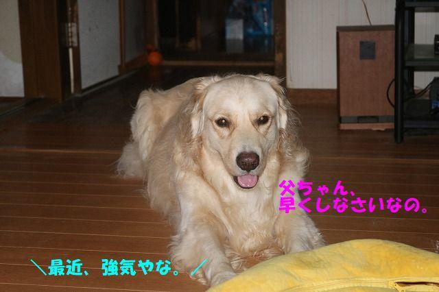 IMG_6893.jpg
