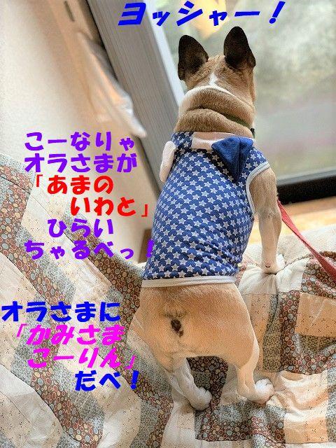IMG_3564(Edited).jpg