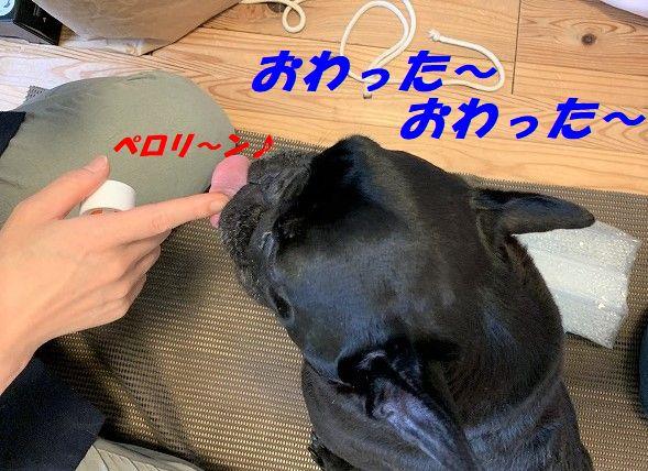 IMG_3772.jpg