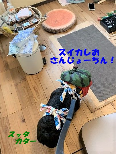 IMG_4448(1).jpg