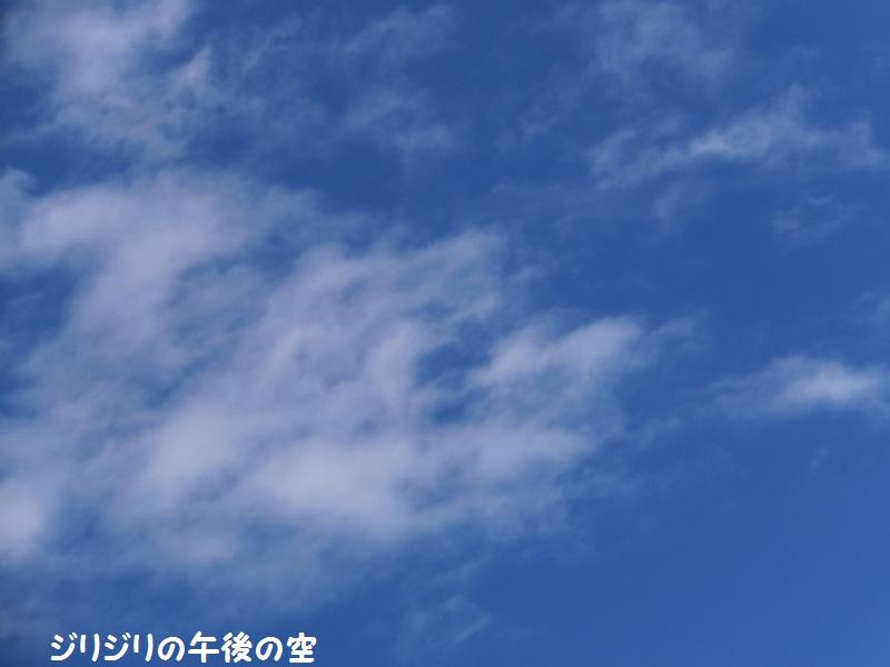 DSCF7160_1.jpg