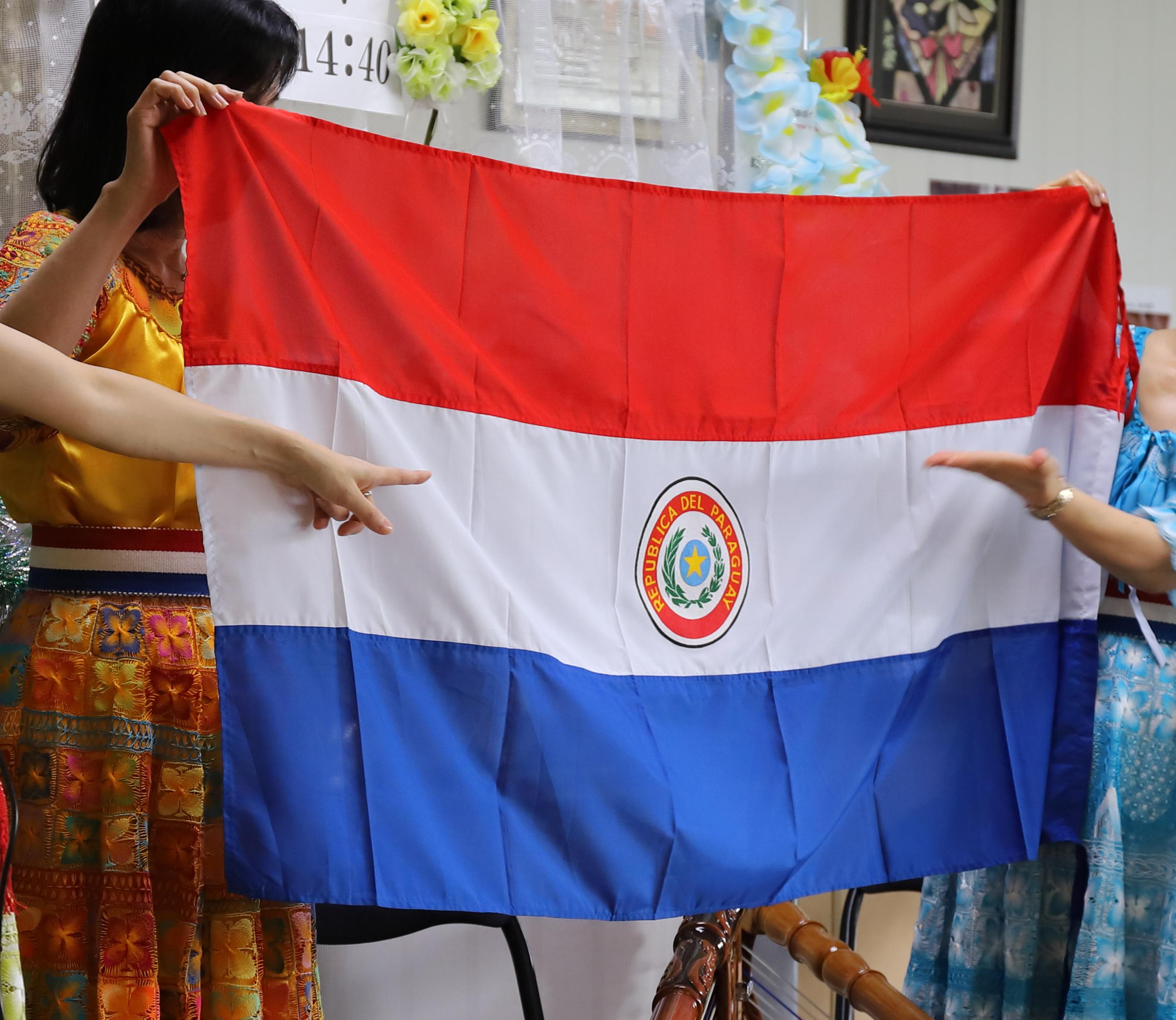 アルパ国旗2