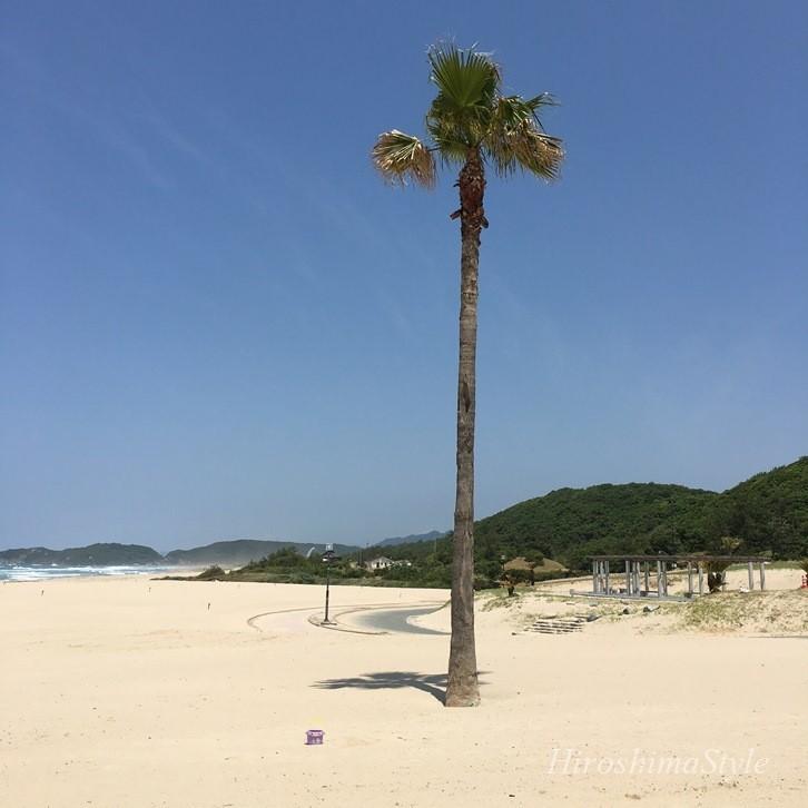 石見海浜公園 海水浴場 夏