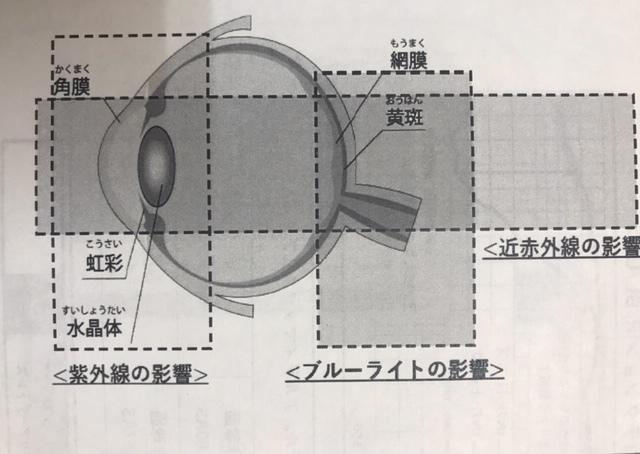 m4.jpeg