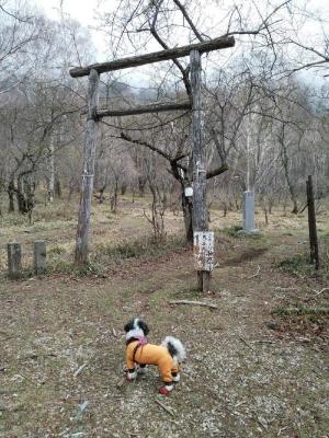 鶏頂山 キャバマル