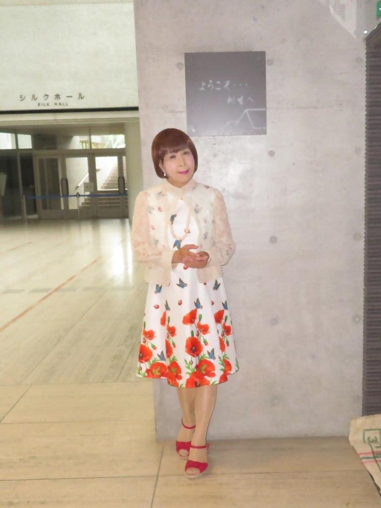 蝶々とポピー花柄ワンピB(3)