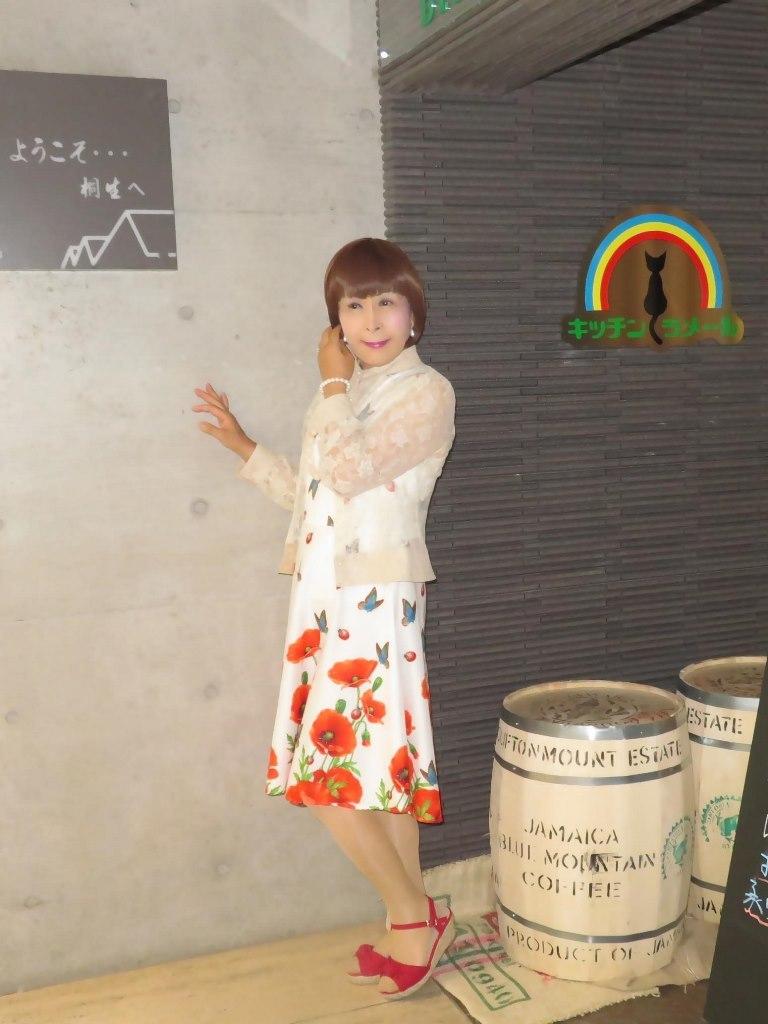 蝶々とポピー花柄ワンピB(4)