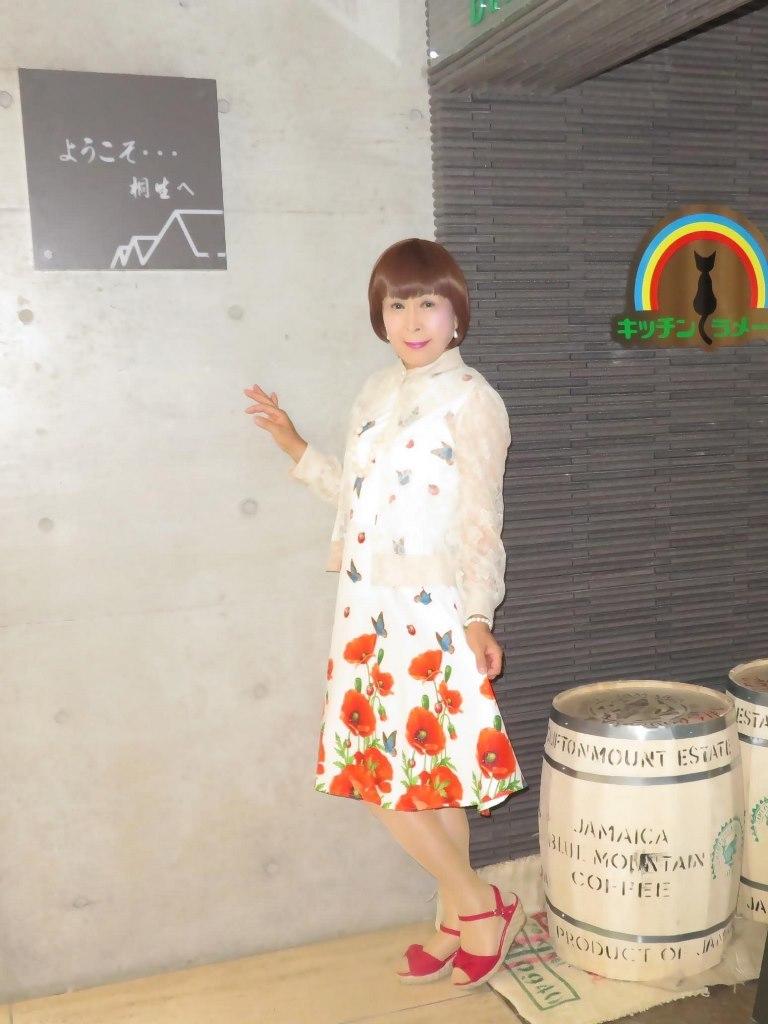 蝶々とポピー花柄ワンピB(5)