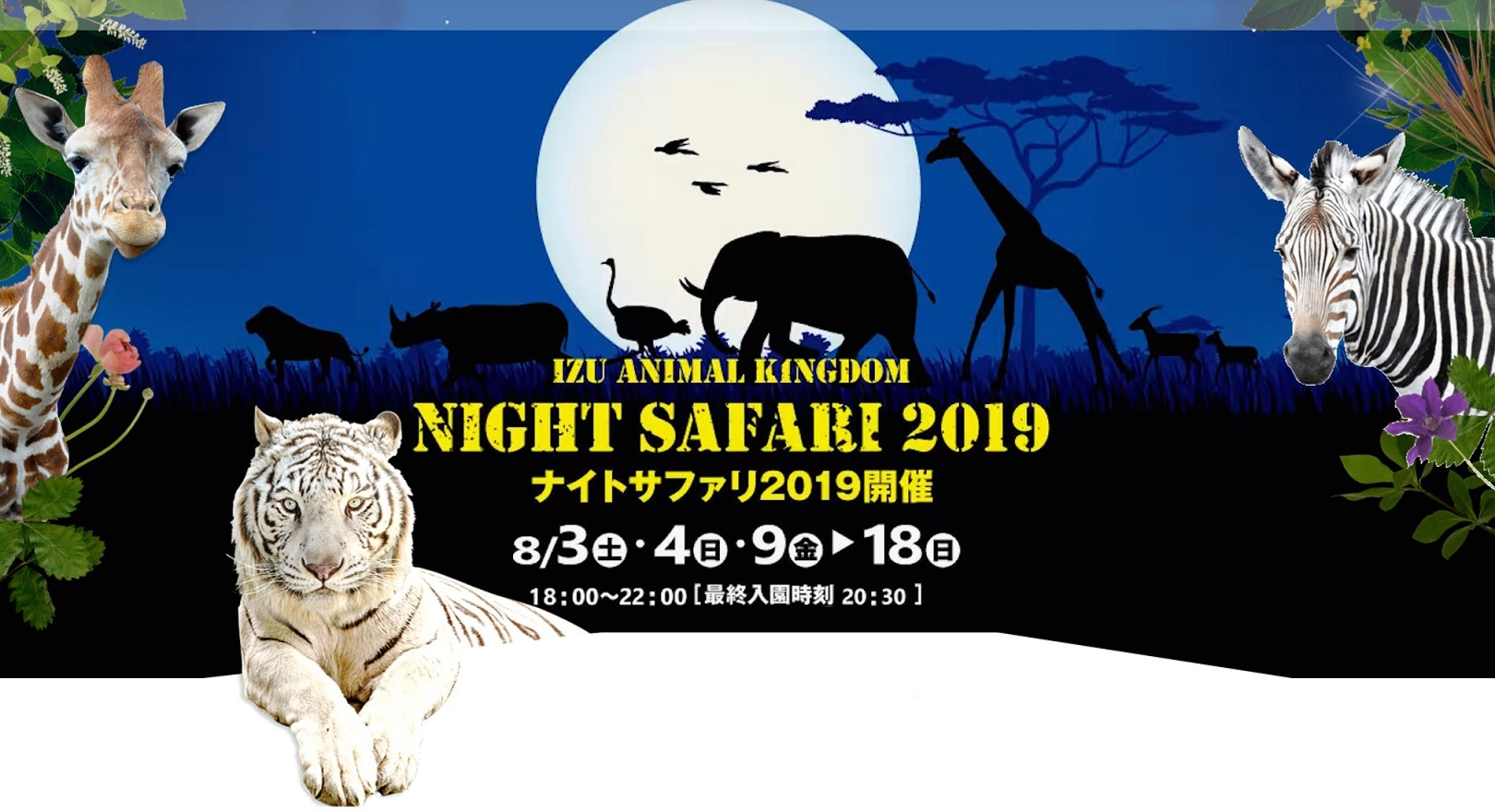 2019 night safari homepage mini