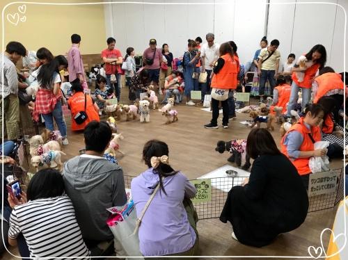 2019-06-23ふれあい会in小豆沢_190625_0242