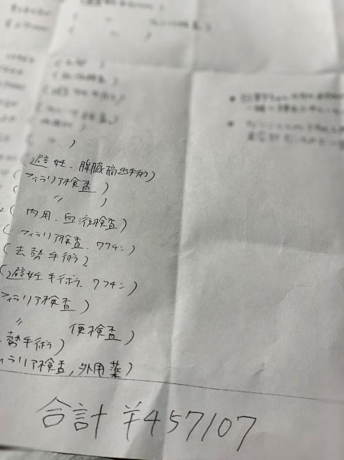 IMG_4307(1).jpg
