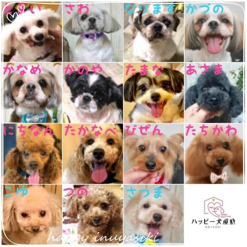mini2019puti_hureai_member_2.jpg