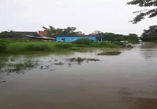 大洪水 (3)
