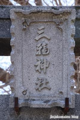三輪神社(三郷市高州)3