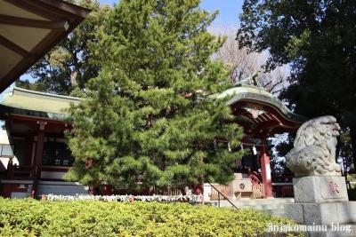 葛西神社  葛飾区東金町32