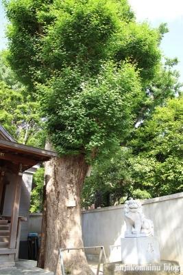 幸神社(文京区関口)19
