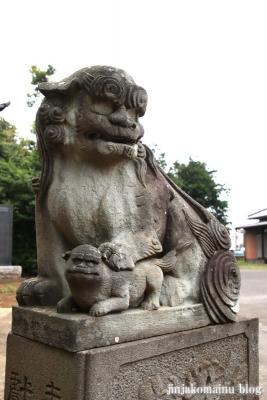 春日神社(松戸市秋山)17