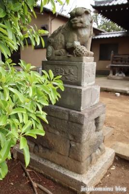 春日神社(松戸市秋山)20