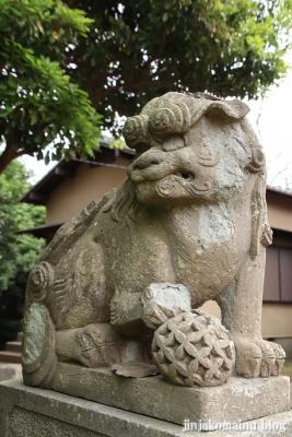 春日神社(松戸市秋山)21