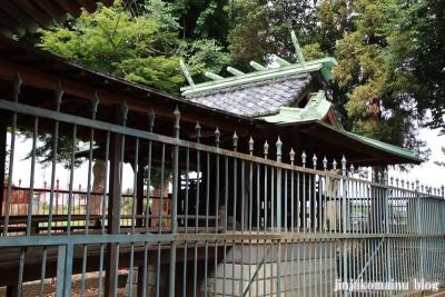 胡録神社(松戸市大橋)11