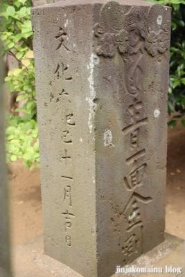 伊弉諾神社(市川市堀之内)25