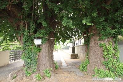 愛宕神社(市川市北国分)1