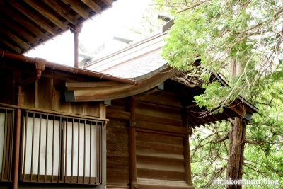 真間稲荷神社(市川市真間)10